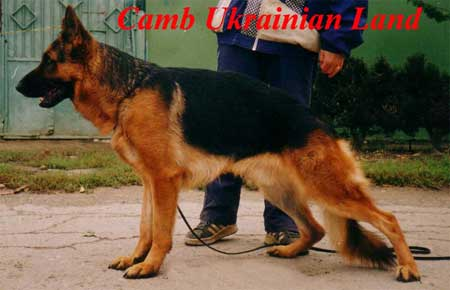 Camb Ukrainian Land